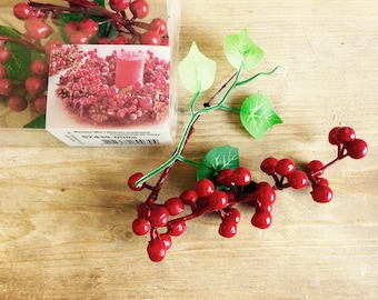Ivy Red Berry