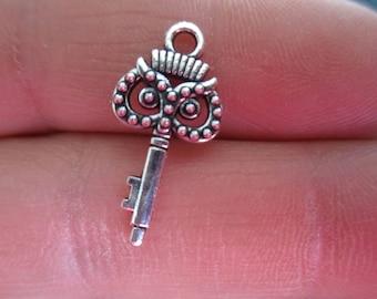 Set of 10 Skeleton Keys w/owl face Charms