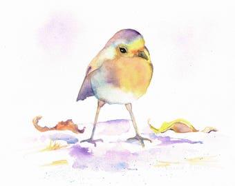 "Robin - bird painting - original watercolour - ""Listening"""