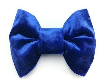 Royal blue velvet - Pet bow tie