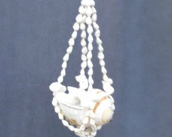 Sea Shell Hanger with Striped Sea Shell