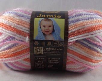 Skein of Summer Stripes Jamie Yarn - Lion Brand Yarn