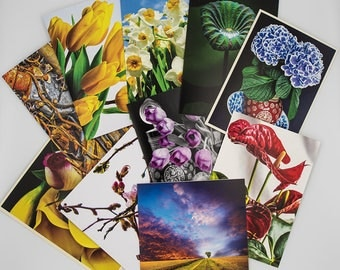 Pack of 10 greeting cards, with envelopes, suitable for any occasion.