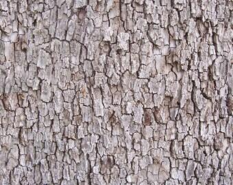 Rustic Look Wood Bark Texture Digital Paper Scrapbook Digital Print Instant Download WBT131