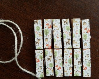 Woodland Creatures Baby Shower -Fox, Deer, Bunnies, Hedgehogs -  Chunky Little Clothespin Clips w Twine for Display - Set of 12 - Boy Girl -