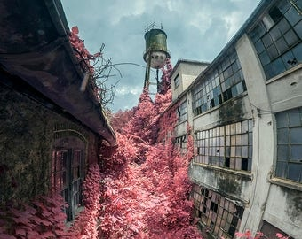 Print - Overgrown Factory