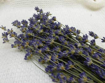 """Dried Lavender Bunch Bouquet Tied with Jute Cord 10"""" - 2017 Crop - 1 ounce Dried Herb Wedding Craft Supply Lavendar Scented 150+ Stems"""