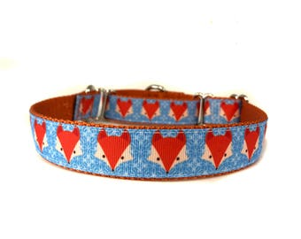 1 Inch Wide Dog Collar with Adjustable Buckle or Martingale in Snowy Fox