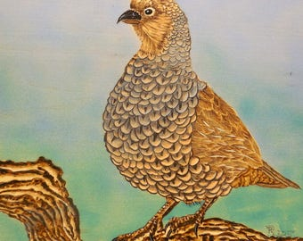 Painted Wood burning (Pyrography) of a Blue  Quail (Scaled Quail) hand made