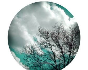 40% OFF SALE Aqua Blue Wall Decor Tree Photograph Nature Sky and Clouds Picture Round Image on an 8x10 inch Fine Art Photography Print Liste