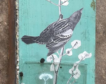 Yarrow regwinged blackbird collage