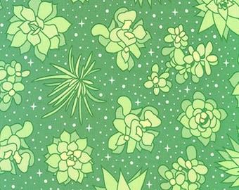 Terrarium (17279-43) Leaf Space Plants by Elizabeth Hartman