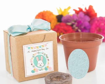 Happy Easter Plantable Egg Party Favors - Flower Garden Starter Kit - Gifts Boys & Girls of All Ages Easter Parties - Easter Basket Fillers