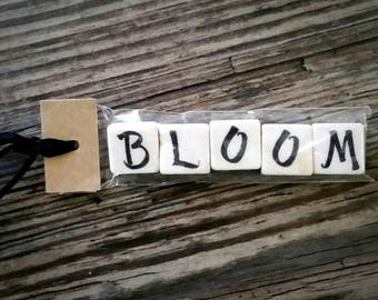 BLOOM Tumbled Stone miniMagnet Word Strip