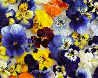 Dry Violas, Dry Flowers, Real, Wedding Confetti, Decoration, Table Decoration, Centerpiece, Real Flowers, Craft Supplies, 100 Dried Flowers