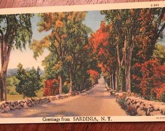 Vintage postcard featuring Sardinia,  New York 1946