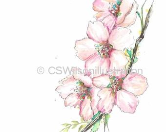 Blossoms - Fine Art Print