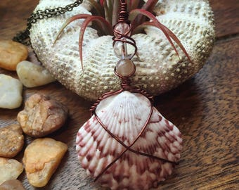 Beach-Found Seashell Wire Wrapped Pendant Necklace