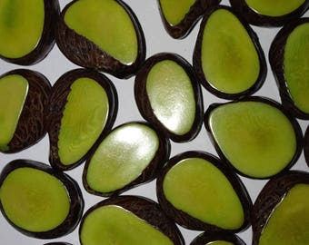 Four Lime Green Tagua Nut Beads, 12mm Thick Slice Beads, Organic Beads, Vegetable Ivory Beads, Natural Beads, EcoBeads