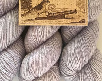 Fairy Dust, Canon Hand Dyes Charles Fingering Yarn