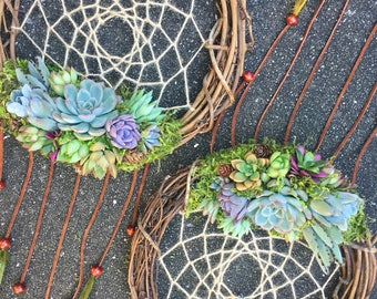 Living Succulent Dream Catcher Wreath (made-to-order)