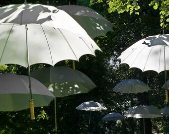 The White umbrellas - Fine Art photo - Postcard for Postcrossers