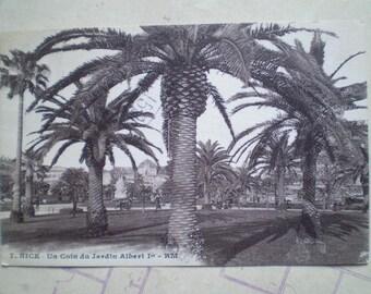 Nice - 1929 - Vintage French Postcard - Un Coin de Jardin Albert Ier