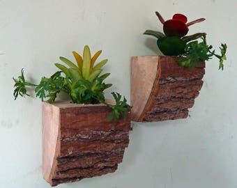 Succulent Plant Holders Set of 2, Rustic Succulent Plant Holders, Natural Log Plant Holders, Wall Mounted Plant Holders, Succulent Planters