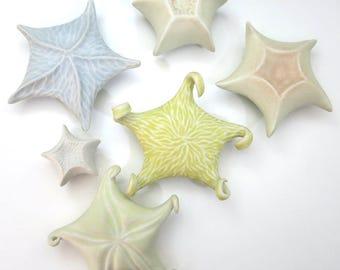 Pale blue porcelain starfish, hand built & carved