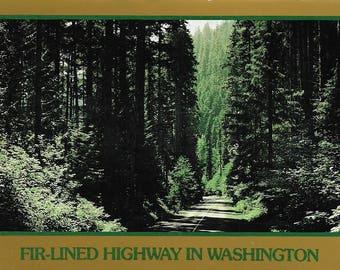 Vintage Postcard Fir-lined Highway Washington Pacific Northwest Love Stamp A1