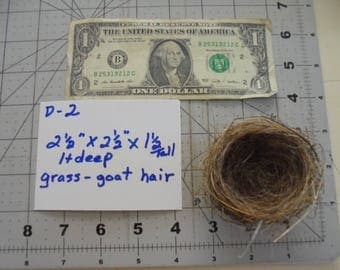 Real SMALL bird nest Goat hair Grass Science Teaching aid Wreath decoration Photo prop Wedding Baby shower Centerpiece decor Wildlife D2