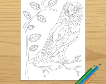 owl coloring page, bird coloring page, nature coloring page, tree coloring page, animal coloring page, digital download