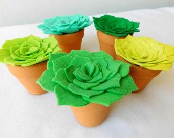 Wool Felt Succulents on Mini Terra Cotta Pots, Set of 5