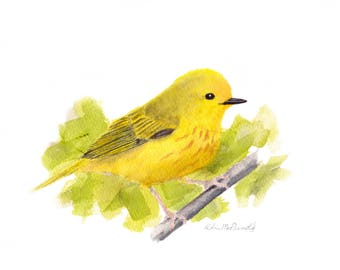 Yellow Warbler 8x10 Watercolor Painting, warbler, Bird,warbler painting,Nature,Bird Lover,Wildlife,Animal,not a print,birder,made in ohio