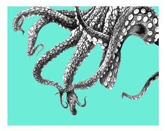 Octopus Tentacles Nautical Vintage Style Print Beach House Decor Blue Gray Squid