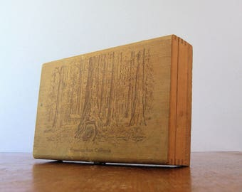 Vintage California Redwoods Tunnel Tree Wooden Souvener Hinged Box