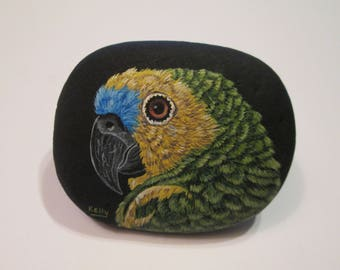 Blue Fronted Amazon Parrot hand painted on a rock by Ann Kelly