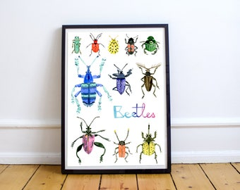 Beetles - Poster - collection Les Botaniques