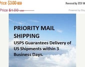 PRIORITY MAIL SHIPPING Offer for shipments    Within the United States