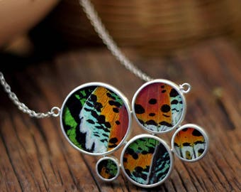 Butterfly wing jewelry Insect jewelry Real butterfly necklace Gift for women Moth Entomology Biology gift Taxidermy jewelry Bug jewelry