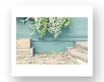 French decor, canvas art, canvas wall art, cottage decor, flower photography, wall art canvas, white art, Vermont art, Vermont wall art