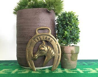 Vintage Brass Horses Head Medal Ireland