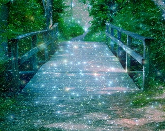 """Fantasy Woods Path """"Fireflies"""" Nature Art Woodland Dreams Enchanting Forest Dreamscape Photography Surreal Abstract Mixed Media Sparkles"""