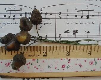 6 Vintage German Millinery Fruit Acorns Lacquered Spun Cotton Textured Millinery Flower Stamens Pips Antique Christmas Hat Cloche Hat Trim