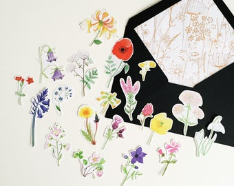 British Wildflower Sticker Pack - Illustrated Stickers - Planner Stickers - Bullet Journal Stickers - Hand Cut Stickers - British Nature