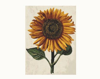 Cross Stitch Kit Sunflower with Background by Daniel Froesch, Floral Cross Stitch, Embroidery Kit, Needlework DIY Kit (FROES03)