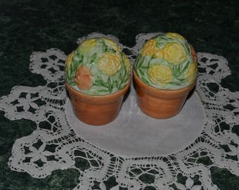 Vintage Pot of Flowers Salt and Pepper Shakers