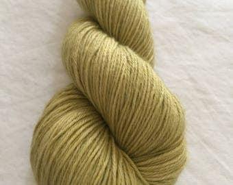 Yankee Breeze - Golden Pear