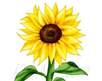 50 OFF Beautiful Sunflower Clipart Clip Art Flower Scrapbooking