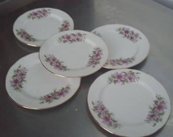 5 Royal Kent Bone China Flower Floral Tea Side Plates Cake Sandwich